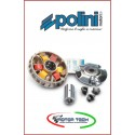VARIATORE POLINI 241621 241.621 BEVERLY SCARABEO LIBERTY SPORTCITY 200